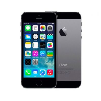 iPhone 5s_pilkas